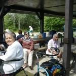 Picnic gatherings